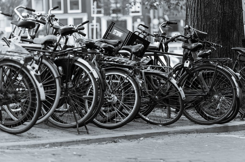 Cyclepassion