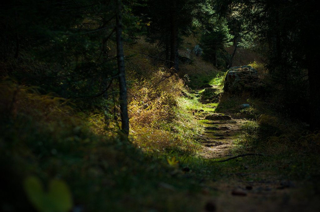 Path VI